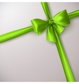 green bow and ribbon vector image vector image