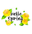 hello spring background with flower vector image
