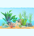 seascape rocks and plants vector image