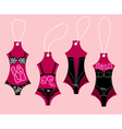 Set of underwear collection for women vector image vector image