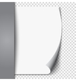 New white page curl on blank sheet isolated paper vector image