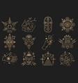 esoteric symbols thin line geometric vector image vector image