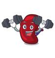 fitness spleen character cartoon style vector image vector image
