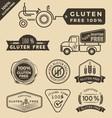 set gluten free food certified label logo vector image vector image