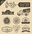 Set of gluten free food certified label logo vector image vector image