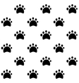 dog tracks pattern vector image vector image