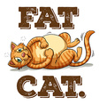 Fat cat with text vector image
