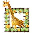 giraffe and flower frame vector image vector image