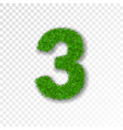 grass number three green number three isolated on vector image