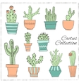 Hand drawn Set of Cactus in the pots vector image vector image
