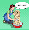 pop art happy woman washing dog vector image vector image