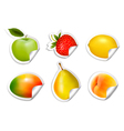 Set of flat fruit stickers vector image vector image