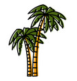 tree palms isolated vector image vector image