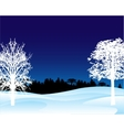 Winter landscape in the night vector image vector image