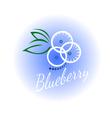 logo blueberry isolated vector image