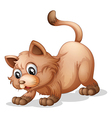 A brown cat vector image