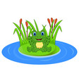 cartoon frog on a leaf in the pond vector image vector image