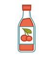 cherry juice in bottle vector image vector image