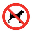 dog not allowed vector image vector image