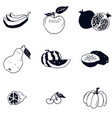 doodle fruit sketch black and white drawing vector image vector image