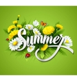 Fresh summer background with grass dandelions and vector image vector image