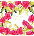 Pink Fuchsia Summer flowers background vector image vector image