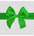 realistic green bow isolated on transparent vector image