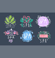 spa club logo design collection beauty and vector image vector image