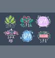 spa club logo design collection beauty vector image vector image
