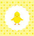 chick flat vector image vector image