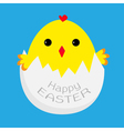 Cute easter chicken and egg shell vector image