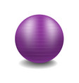 gym ball in purple design vector image vector image