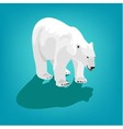 polar bear on blue background Eps 10 vector image