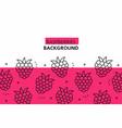 raspberries background vector image vector image