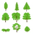 Set different crown of a trees isolated on white vector image vector image
