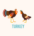 Turkeys in a flat style