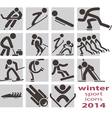 winter sport icons vector image vector image