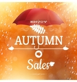 Autumn sale backdrop EPS 10 vector image vector image
