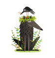 black wolf and crow sitting on head friendship vector image