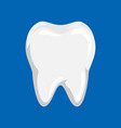 clean tooth vector image