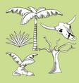 desert plants hand drawn cartoons vector image vector image