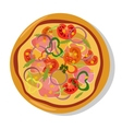 Flat hot pizza icons Pizza isolated on white vector image vector image