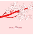 Japan cherry branch blossom vector image vector image