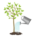 watering tree from can Image for vector image vector image
