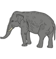 Sketch large African elephant on a white vector image