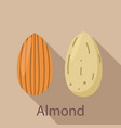 almond icon flat style vector image vector image