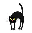 Frightened cat arch back Yellow eyes fangs curl vector image