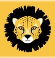 gepard face vector image
