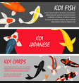 koi fishes banners set template vector image vector image