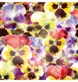 Seamless pattern pansy flowers EPS10 vector image vector image